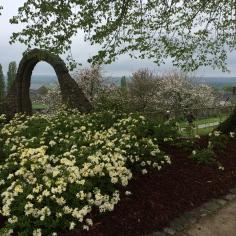 Le jardin des plantes d'Avranches avril 2015