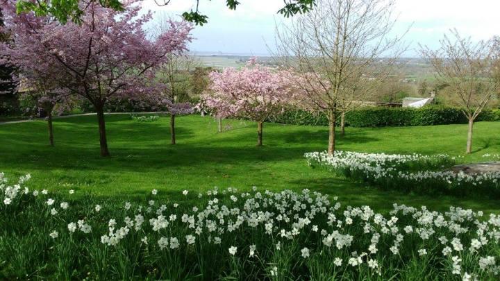le jardin des plantes au printemps 2016